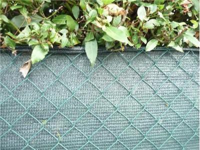 Непрозрачный забор из сетки рабицы